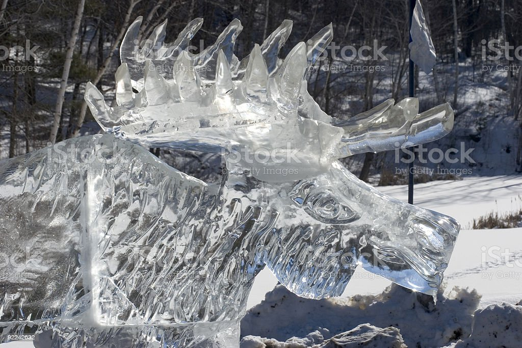Ice Moose Close royalty-free stock photo