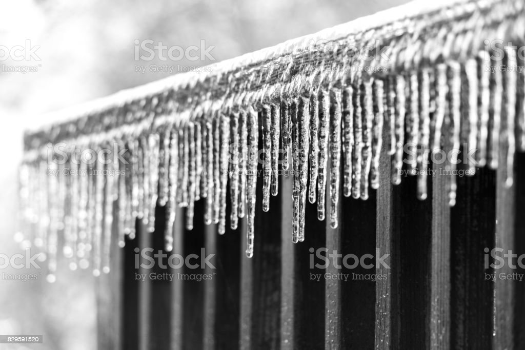 Ice Sickles stock photo