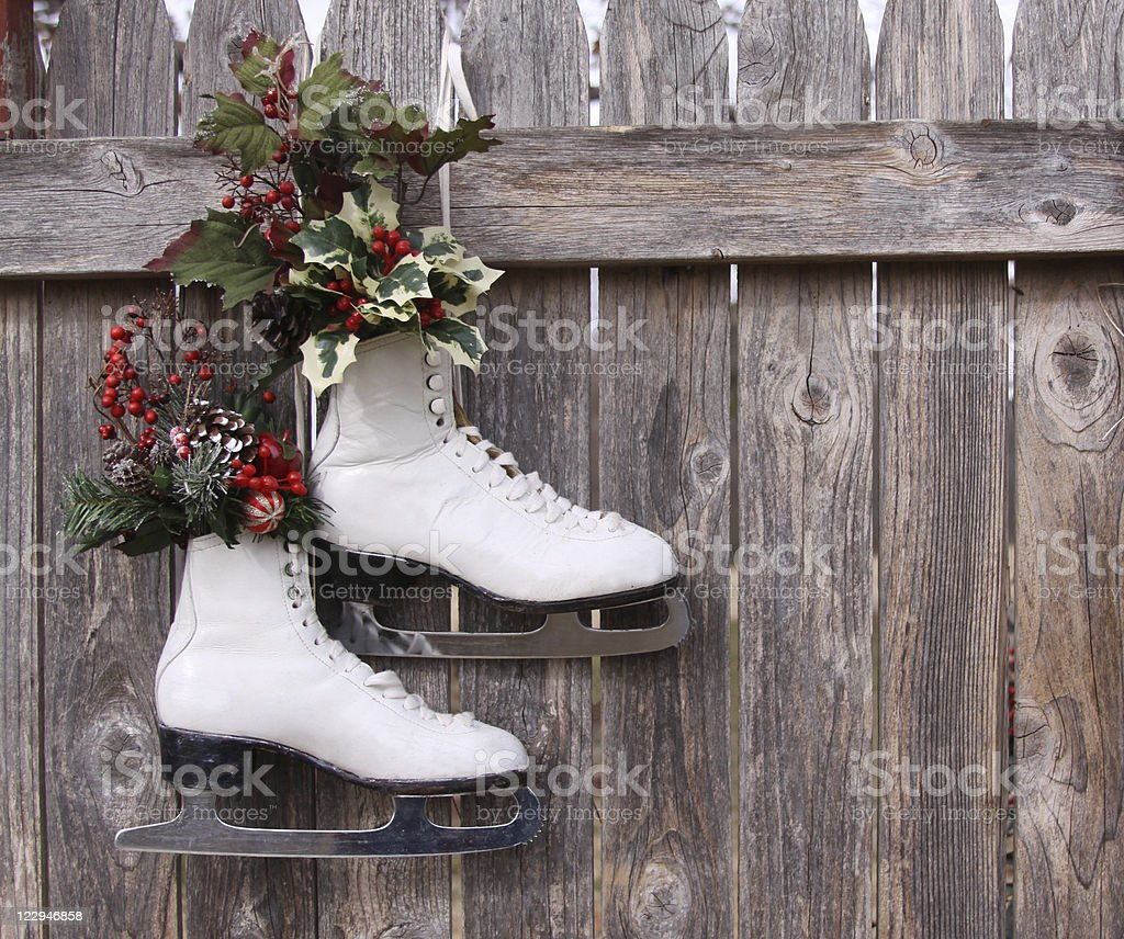 Ice Skates Hanging on Wood Fence with Christmas Holly stock photo