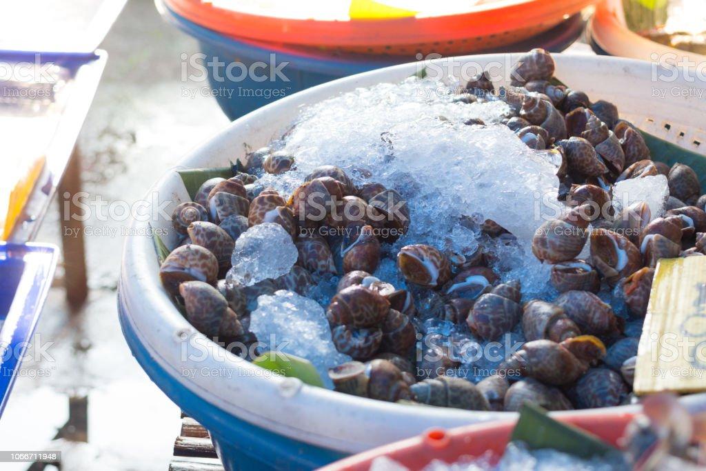 Babilônia de gelo manchado fresco no mercado - foto de acervo