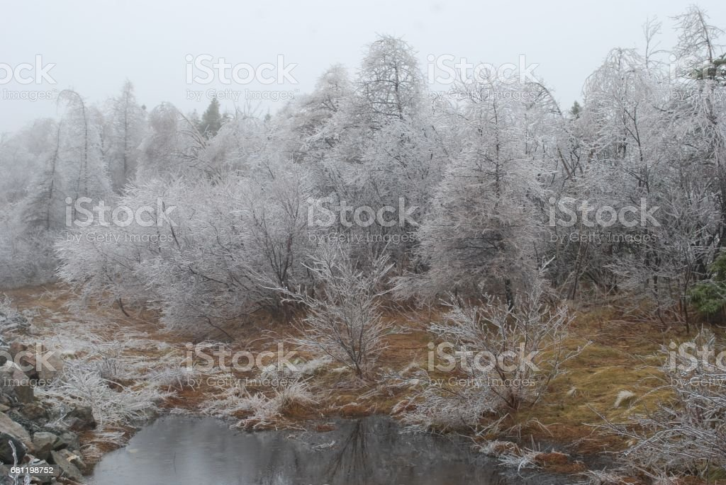 Ice storm in Conception Bay South, Newfoundland and Labrador, Canada, April 21, 2017. royalty-free stock photo