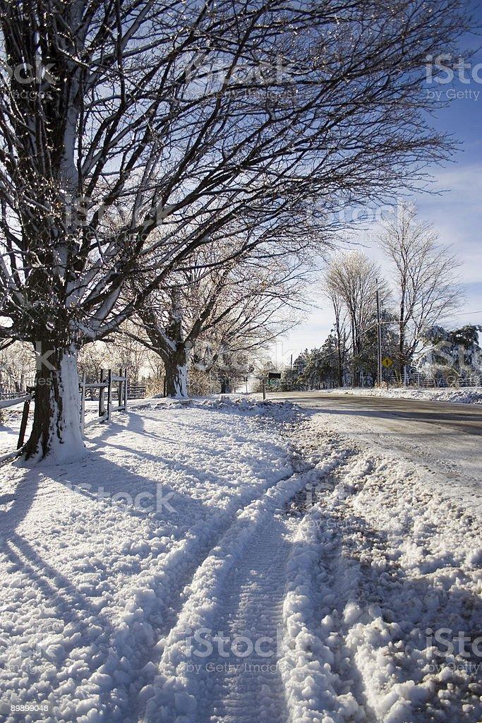 Tempesta di ghiaccio foto stock royalty-free