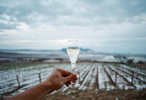 Ice Wine Cheers Stock Photo - Download Image Now