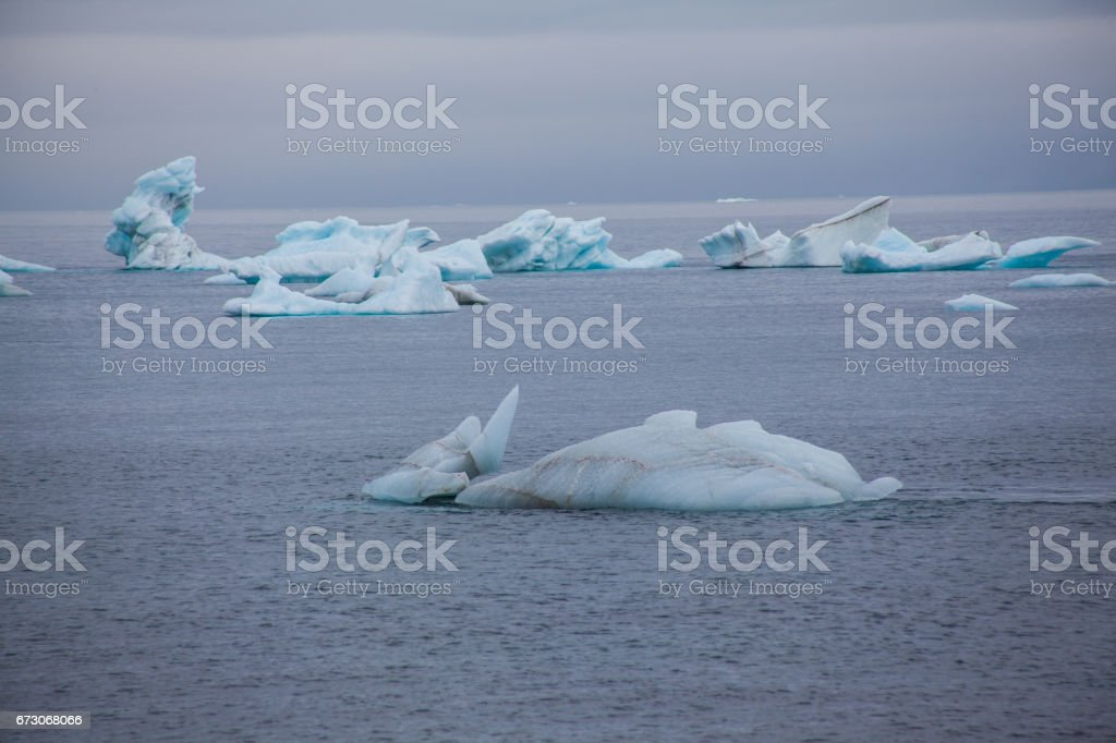 Iceberg field stock photo