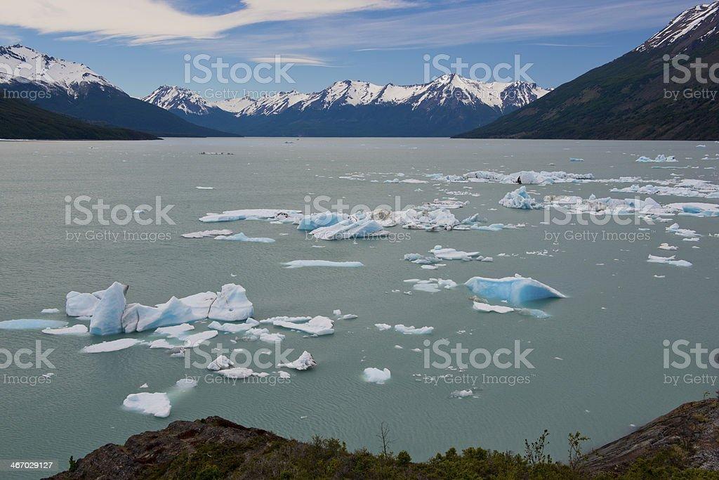Iceberg floating on the Lake Argentino stock photo