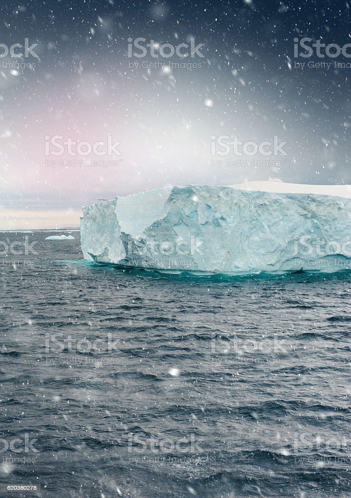 Iceberg In The Morning zbiór zdjęć royalty-free