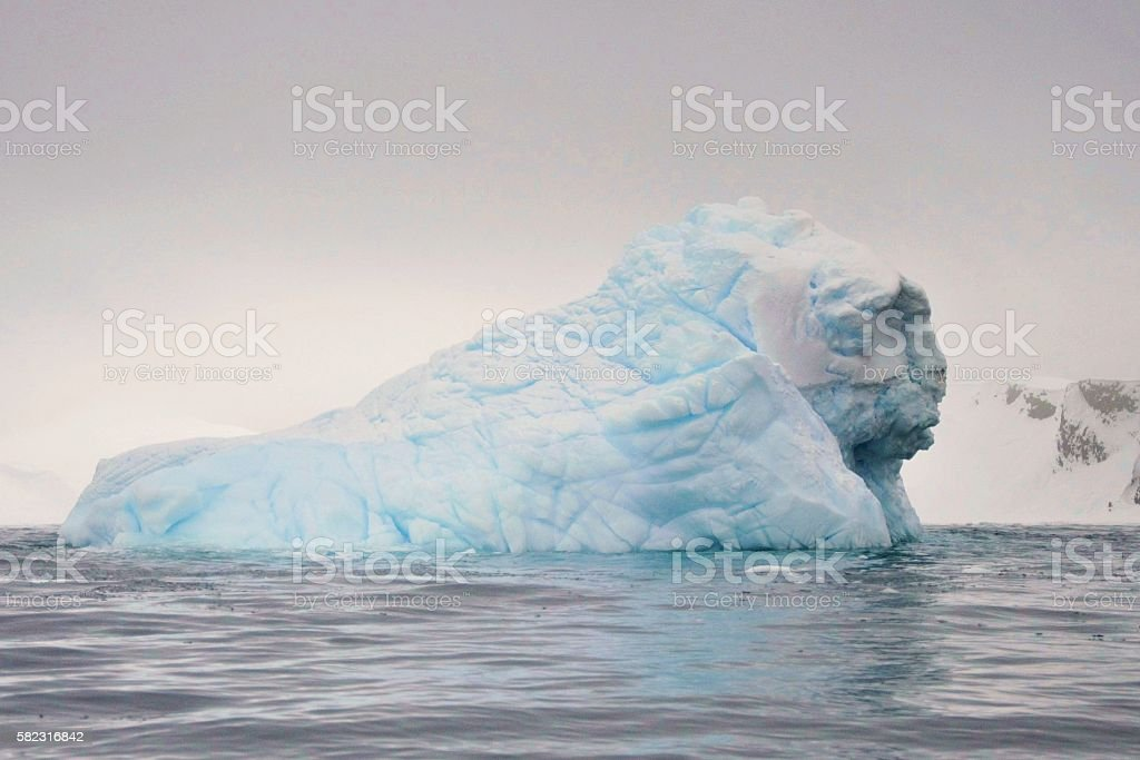 sports shoes 76db6 ce8e9 Iceberg Man Image Stock Photo & More Pictures of Antarctic ...