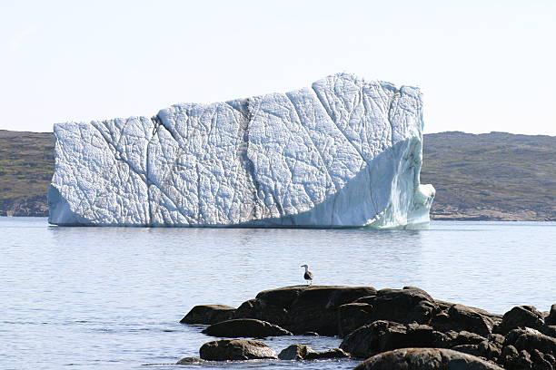 iceberg near st. anthony, newfoundland, canada. - st. anthony of padua stock photos and pictures