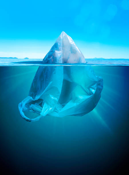 iceberg or plastic bag - iceberg stock photos and pictures