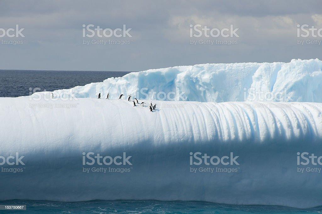 Eisberg mit penguins – Foto