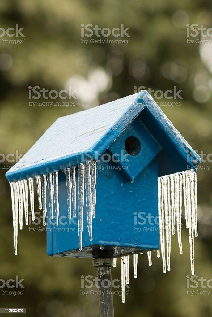 Ice-covered Birdhouse royalty-free stock photo