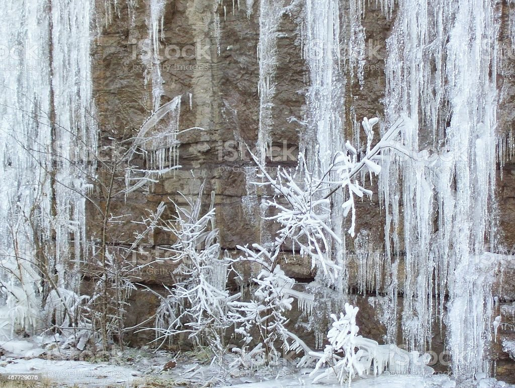 Ice-Covered Bush in Front of an Icy Cliff stock photo