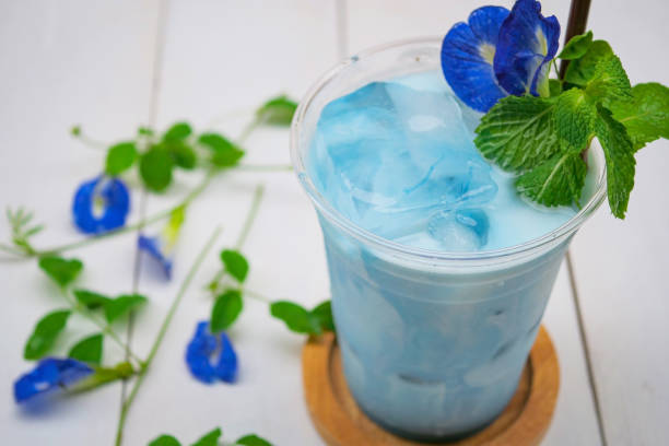 Iced Blue pea milk or Iced Butterfly Pea Latte with milk stock photo