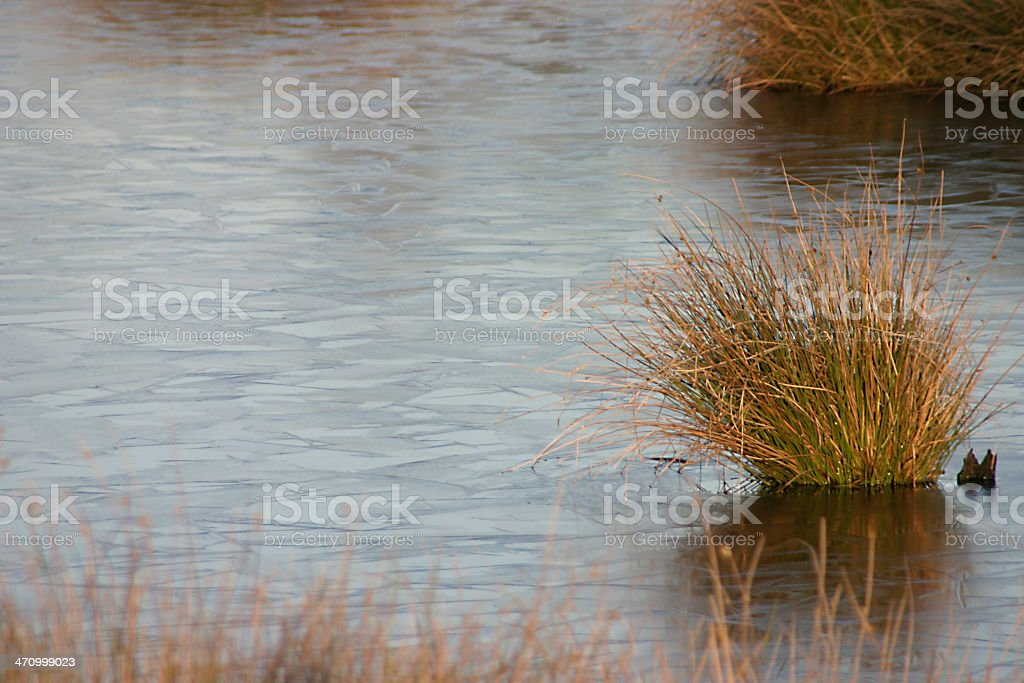 iced over moore stock photo