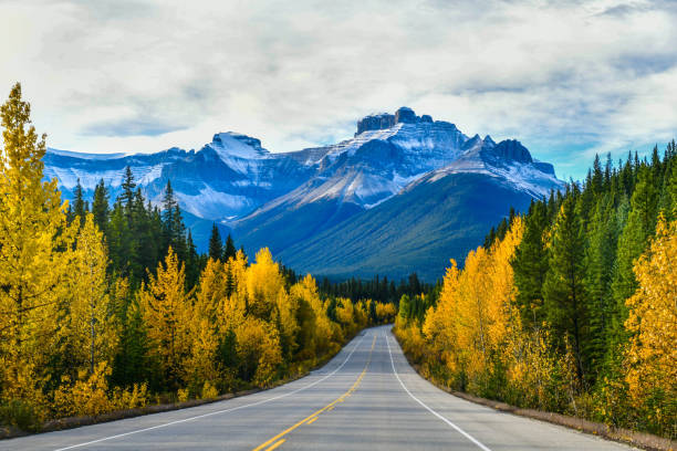 Icefield Parkway in Autumn Jasper National park,Canada stock photo