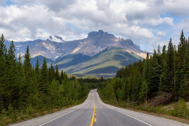 Icefields Parkway Scenic Empty road in the Canadian Rockies during a vibrant sunny and cloudy summer morning. Taken in Icefields Parkway, Banff National Park, Alberta, Canada. road trip stock pictures, royalty-free photos & images