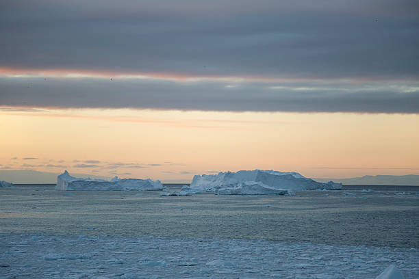 Icefjord with large icebergs stock photo