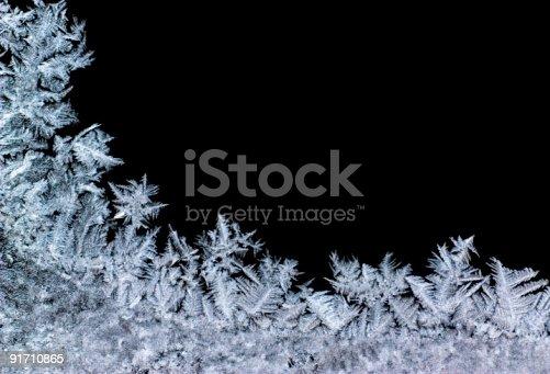 istock iceflower 91710865