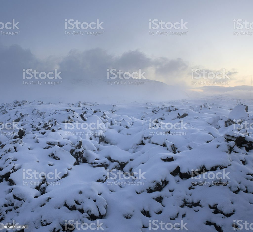 Iceland, fresh snow covered black lava royalty-free stock photo