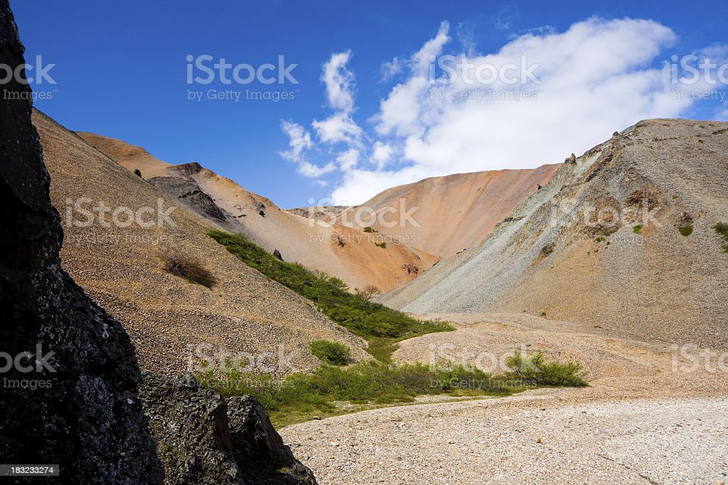 Icelandic Canyon royalty-free stock photo