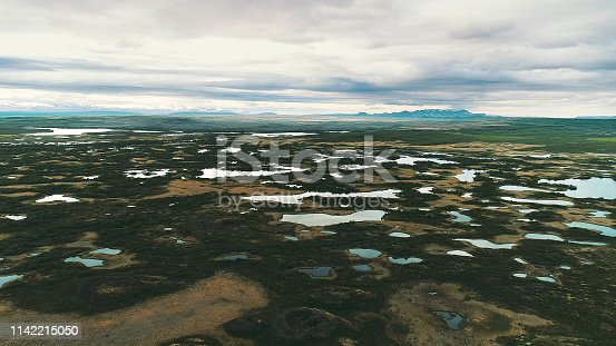 Bright green meadow and mountains. Aerial view