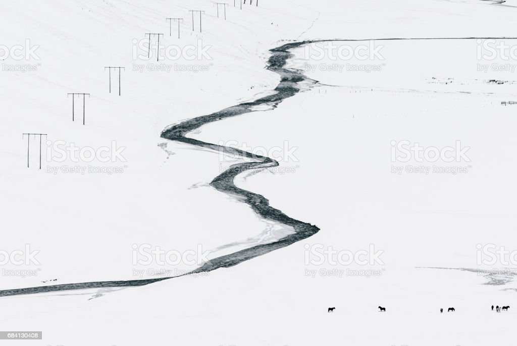 Icelandic winter minimalism: aerial view of a glacial wild river with some farm horses pasturing nearby in the snow stock photo