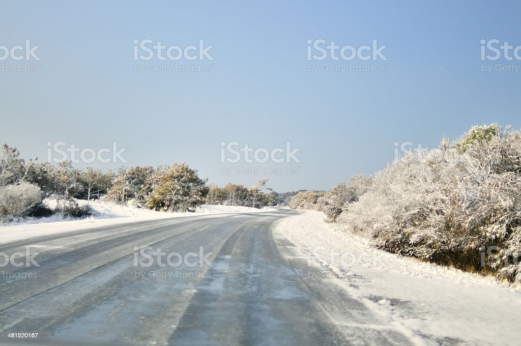 Icey Road At Assateague royalty-free stock photo