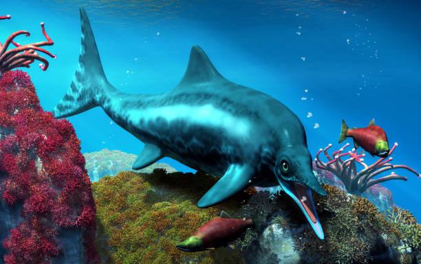 ichthyosaur - organizm wodny zdjęcia i obrazy z banku zdjęć