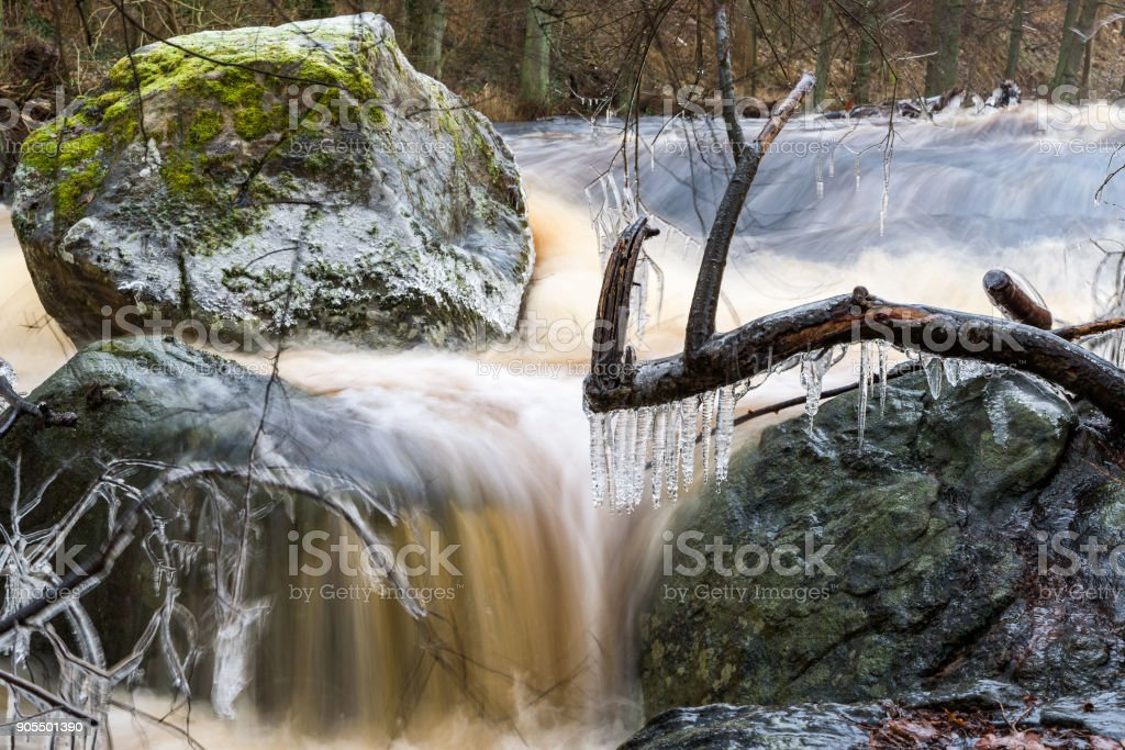 Icicles on branch stock photo