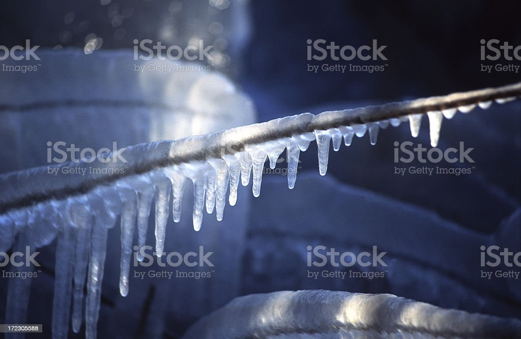 Icicles on reed stock photo
