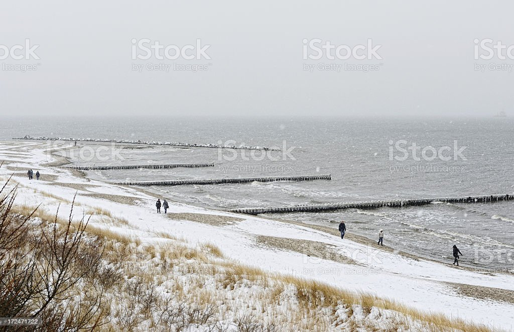 Icicles on the groynes at beach of Darss (Germany) royalty-free stock photo