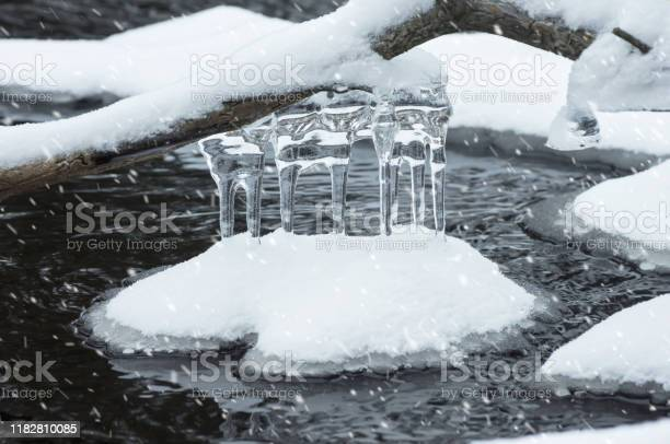 Photo of Icicles on the water