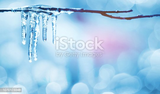 Spring bright background with icicles on  branch of  tree
