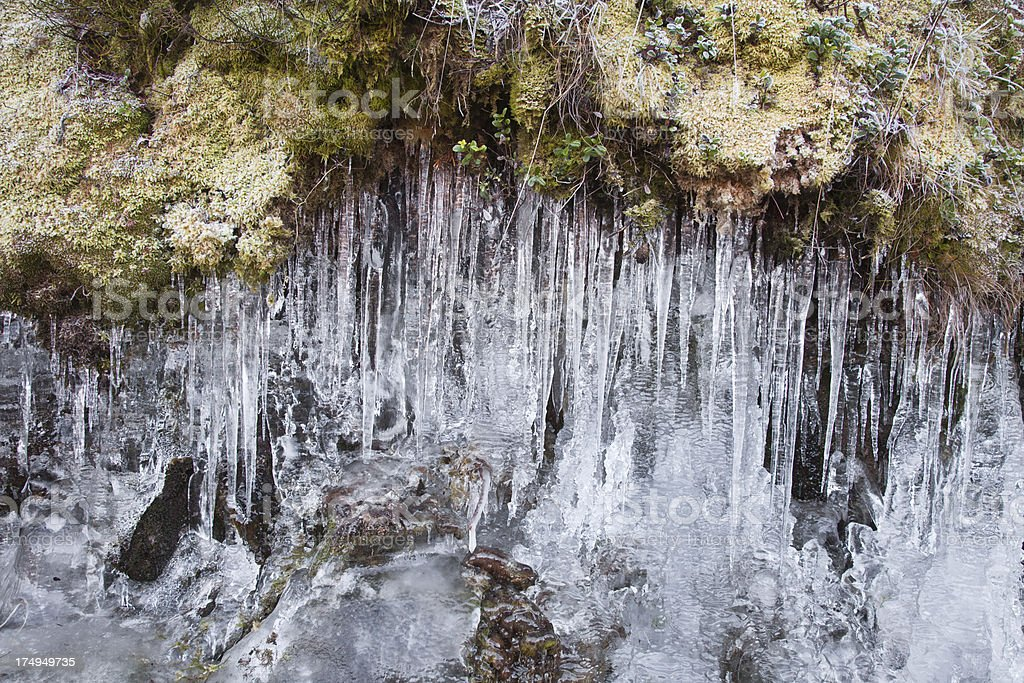 Icicles royalty-free stock photo
