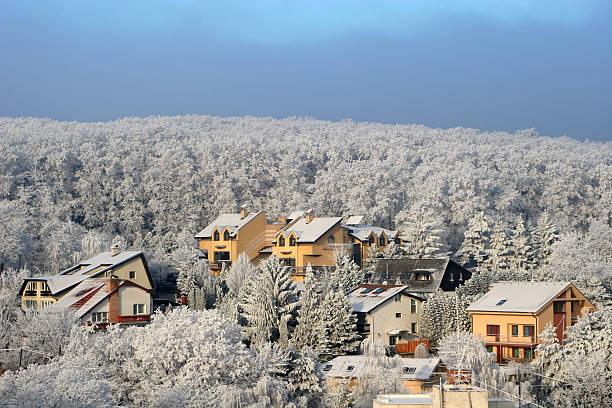 zuckerguss forest und die houses - bratislava hotel stock-fotos und bilder