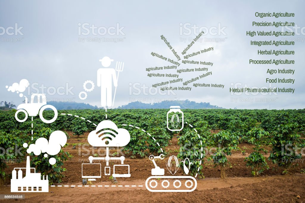 icon concept Agritech system coffee stock photo