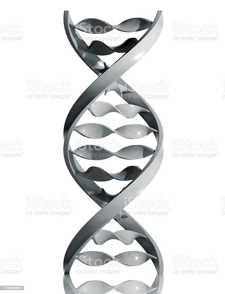 DNA icon. royalty-free stock photo