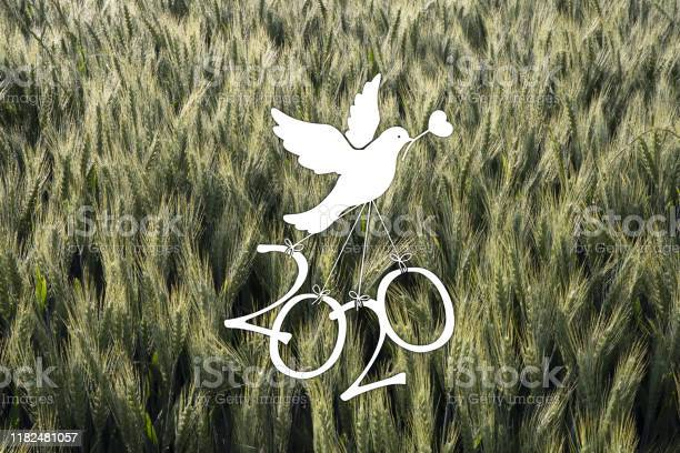 Icon to wish the new year picture id1182481057?b=1&k=6&m=1182481057&s=612x612&h=gnhyhaxajxtghgqtezz nl3w labiqo99owumkr 4kg=
