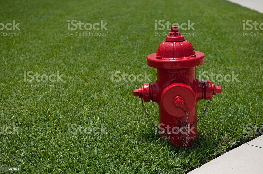 Iconic red fire hydrant against green grass stock photo
