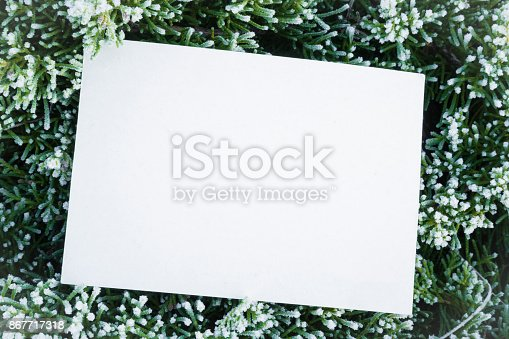 istock Icy white blank greeting card in the frozen evergreen bush. Mock up for holiday post cards for good mood and seasonal offers as advertising. Empty place for a text. Early morning. 867717318