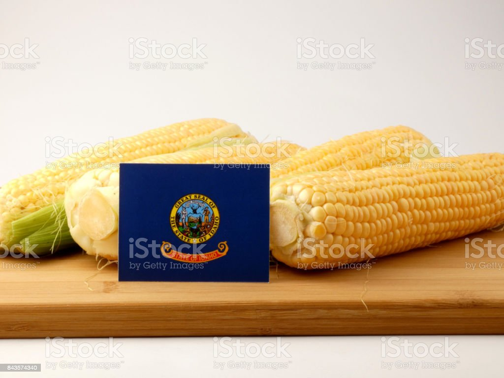 Idaho flag on a wooden panel with corn isolated on a white background stock photo