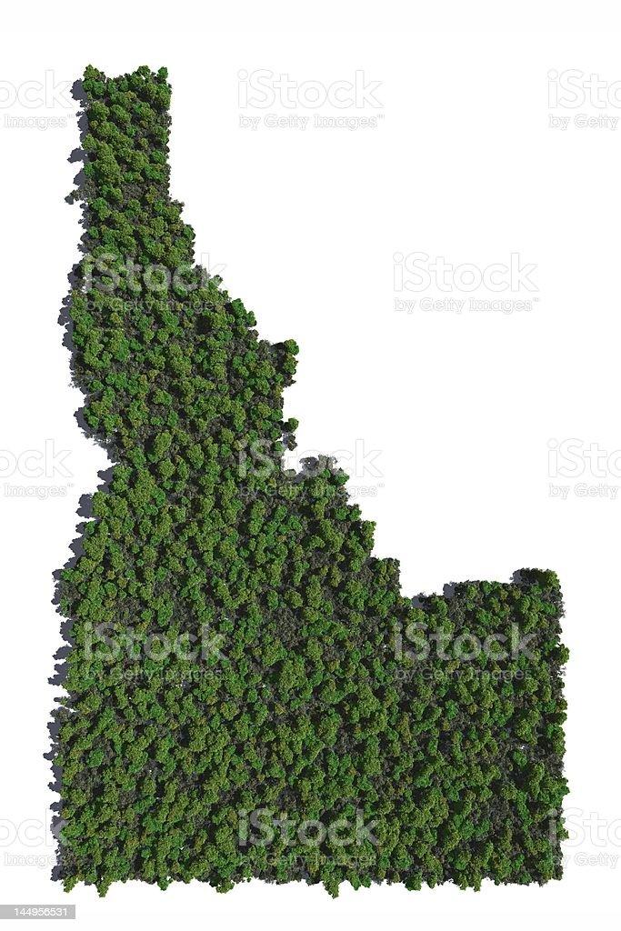 Idaho in Trees stock photo