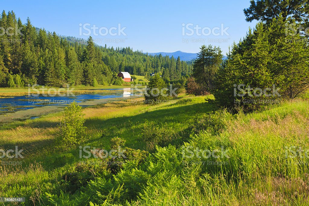 Idaho lake, forest, and countryside stock photo