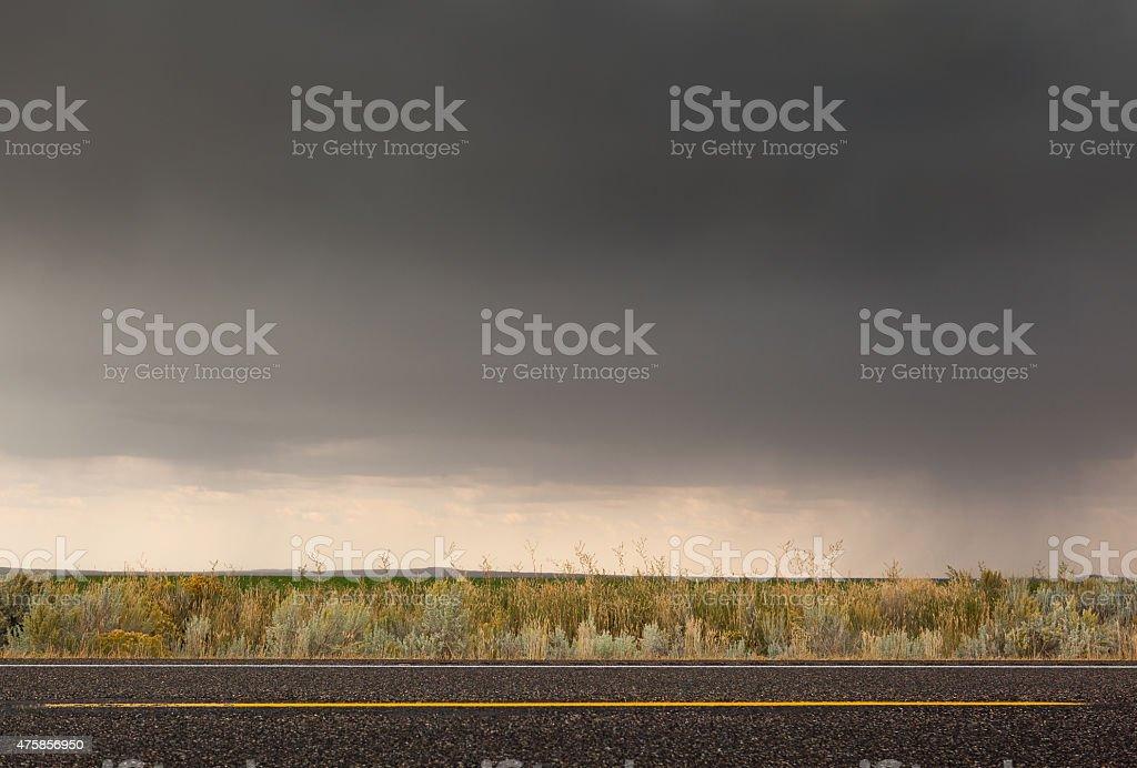 Idaho road side vegetation stock photo