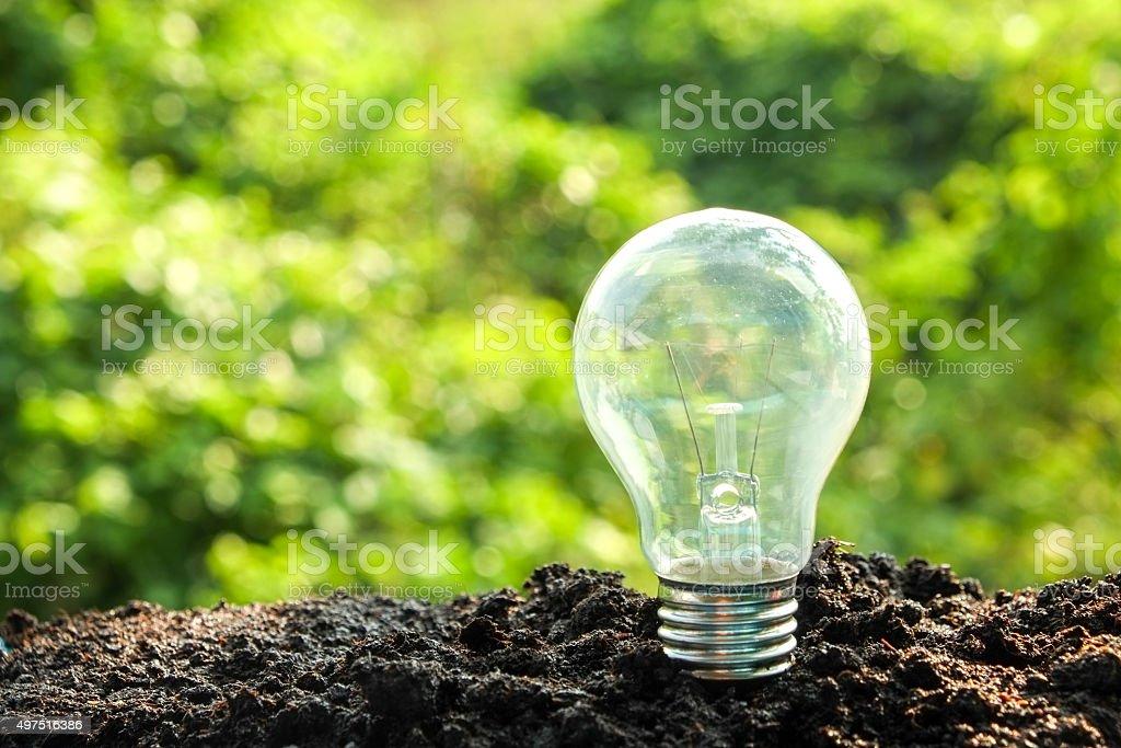 idea and energy concept Light bulb in soil idea and energy concept Light bulb in soil 2015 Stock Photo
