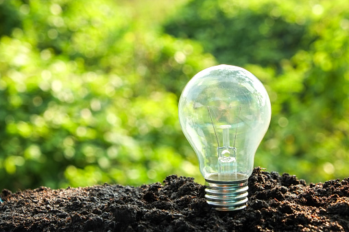 Idea And Energy Concept Light Bulb In Soil Stock Photo - Download Image Now