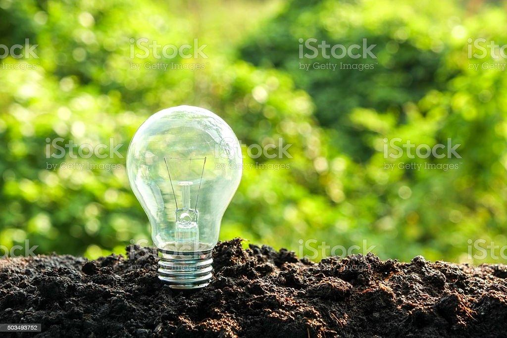 idea and energy concept Light bulb in soil stock photo