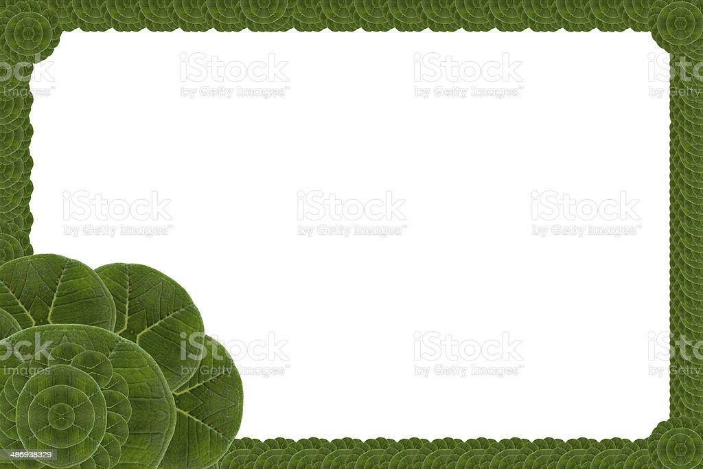 Idea  frame leaf. royalty-free stock photo