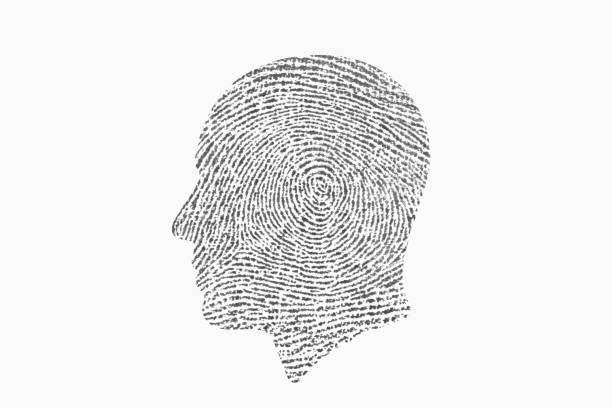 Identity. Fingerprint head. stock photo