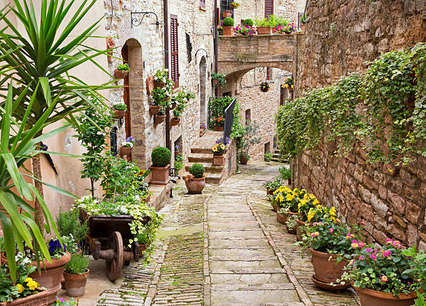 Idyllic alley with potted plants in Spello, Umbria Italy Idyllic alley with potted plants in Spello, Umbria Italy umbria stock pictures, royalty-free photos & images